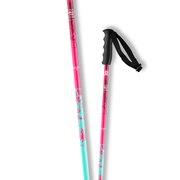ジュニア スキーポール BRIGADE JR 399090