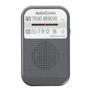 ポケットラジオ RAD-P132N-H