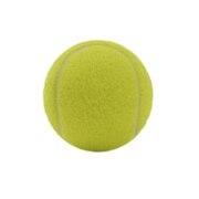 硬式用テニスボール ノンプレッシャー 738G9ZK3701 YEL