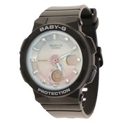 BEACH TRAVELER SERIES BGA-250-1A2JF