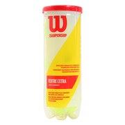 硬式用テニスボール CHAMPIONSHIP EXTRA DUTY WRT100101